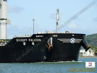 Bright Falcon
