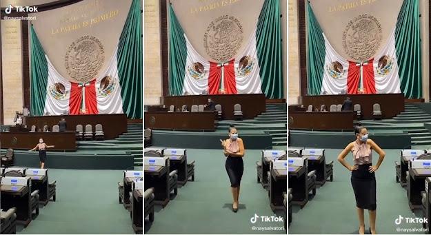 Tunden en redes a Nay Salvatori por 'Tik Tok' en plena Cámara de Diputados