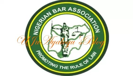 Adamawa judges holding proceedings under trees —Adamawa NBA