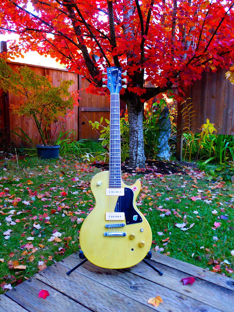 autumn, foliage, red maple leaves, '77 Les Paul Special, TV blonde, TV, blonde, Gibson, limed oak finish, modified Les Paul, Oregon autumn color, Eugene, made in Kalamazoo, Michigan,