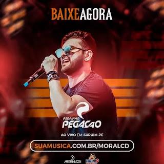 Download - Pedrinho Pegação - Surubim - PE - Março - 2020