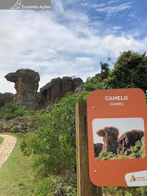 Arenito com formato de camelo no Parque Estadual Vila Velha