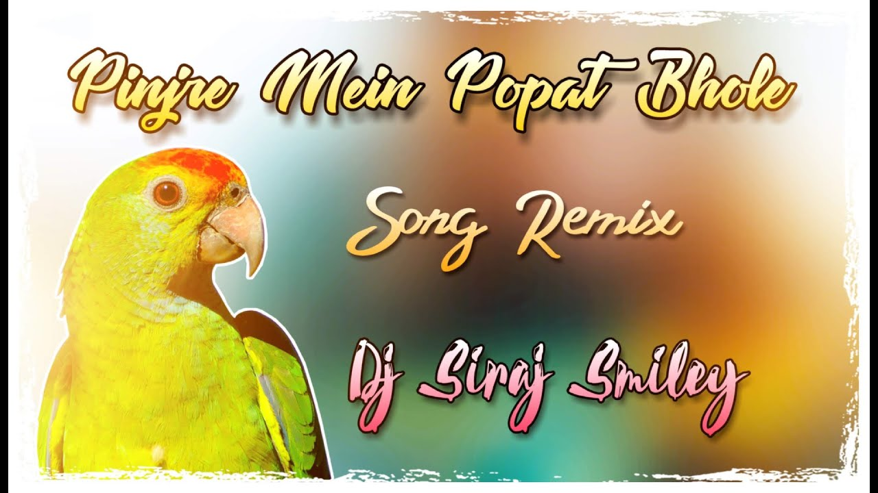 Pinjre Main Popat Bole dj song free dowmload,Pinjre Main Popat Bole dj siraj smiley remix,Pinjre Main Popat Bole dj song free download from newdjsworld.com,Pinjre Main Popat Bole from newdjsworld.in,Pinjre Main Popat Bole dj songs 2020,dj siram smiley remix 2020 free download newdjsworld.com,Pinjre Main Popat Bole 2020 dj song free download,Pinjre Main Popat Bole free download naa songs,Pinjre Main Popat Bole dj song download hearthis.at,2020 dj songs free download,telugu dj songs free download,tollywood dj songs free download,telugu folk songs free download 2020, newdjsworld.com