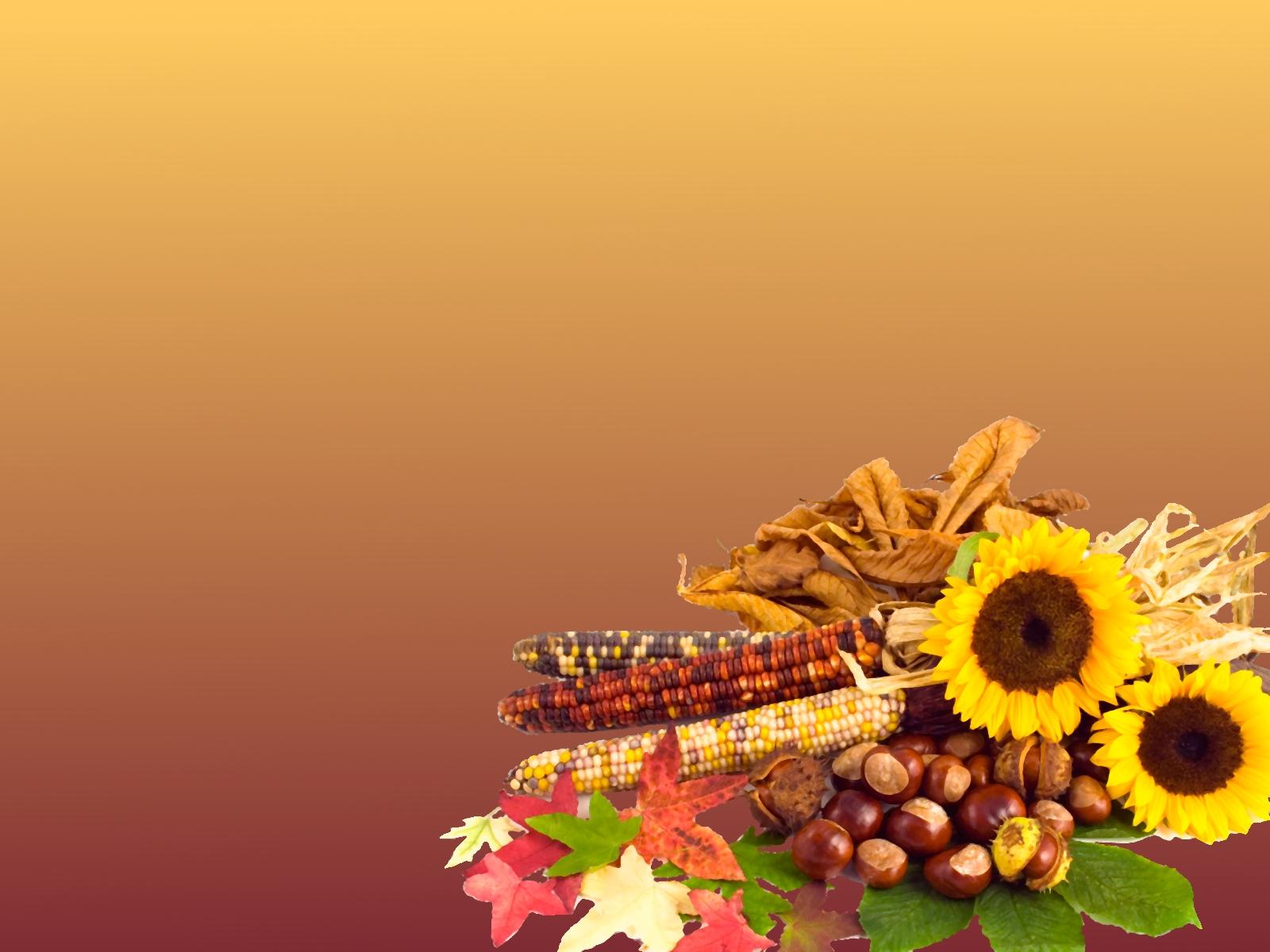 thanksgiving background - photo #10