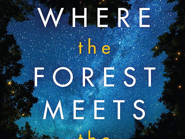 Where Forest Meets the Stars by Glendy Vanderah