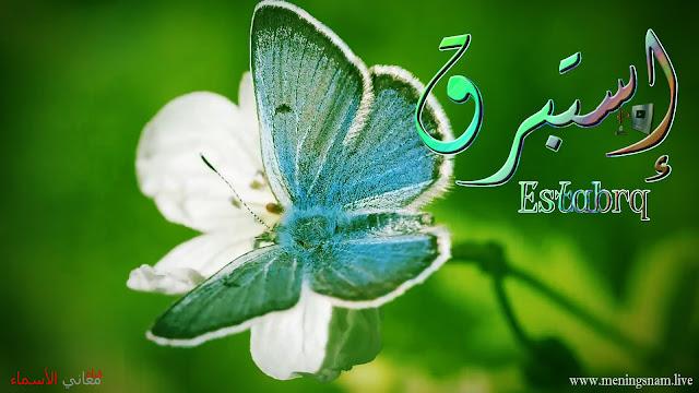 معنى, اسم, إستبرق, وصفات, حاملة ,هذا الاسم, Estabrq,