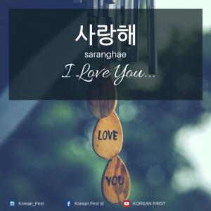 "💠 Saranghae     Ah ini adalah kata paling dihafal sejuta umat pecinta drama Korea. Pasti banyak yang membayangkan bagaimana jika aktor Korea favorit mengucapkan kata ini. Duh jadi melayang ke langit ketujuh jadinya! ""Saranghae"" artinya saya mencintaimu."