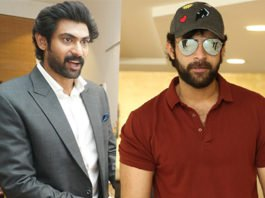 Mega Hero MultiStarrer With Rana Daggubati For Adavi Ramudu
