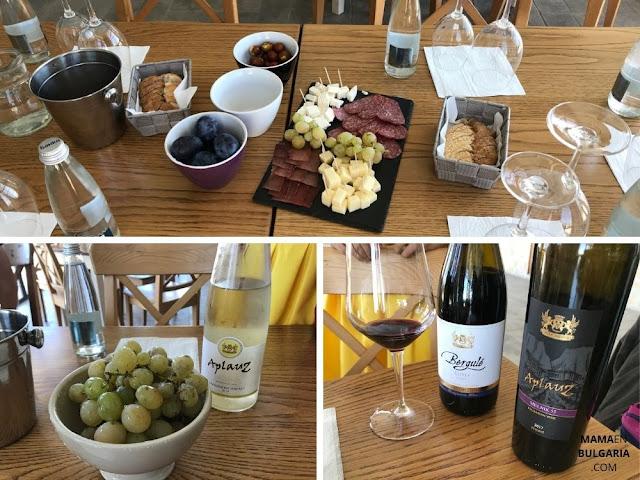 degustación vino Villa Melnik