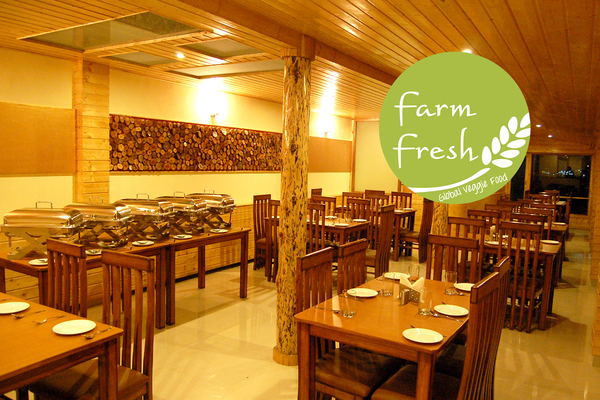 Pure vegetarian hotels in Manali