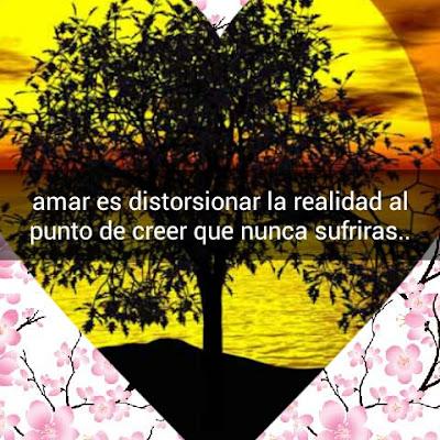 Amor, pasión, desilusion, frases