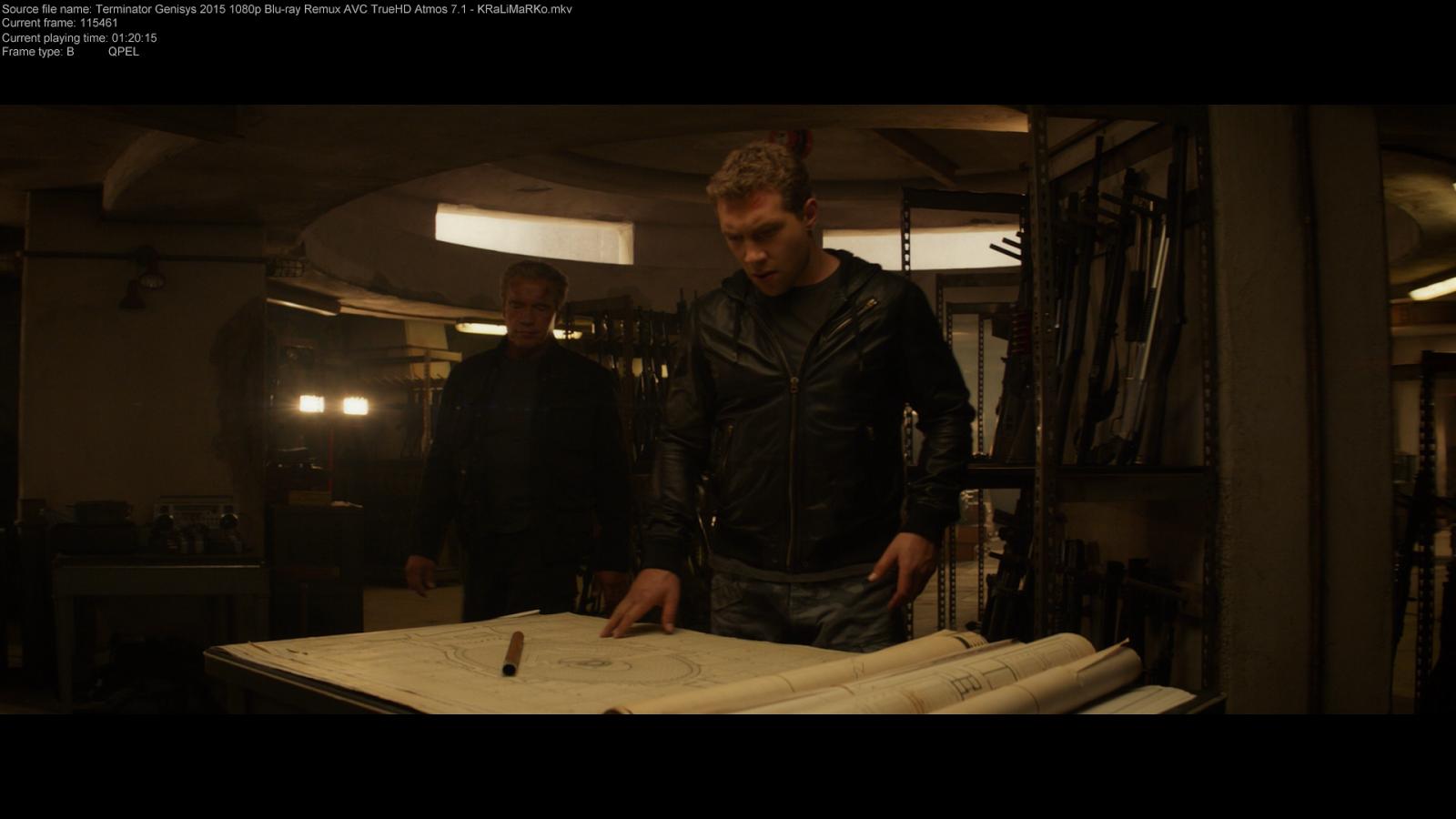 Terminator Genesis (2015) 1080p BD25 2D y 3D 2
