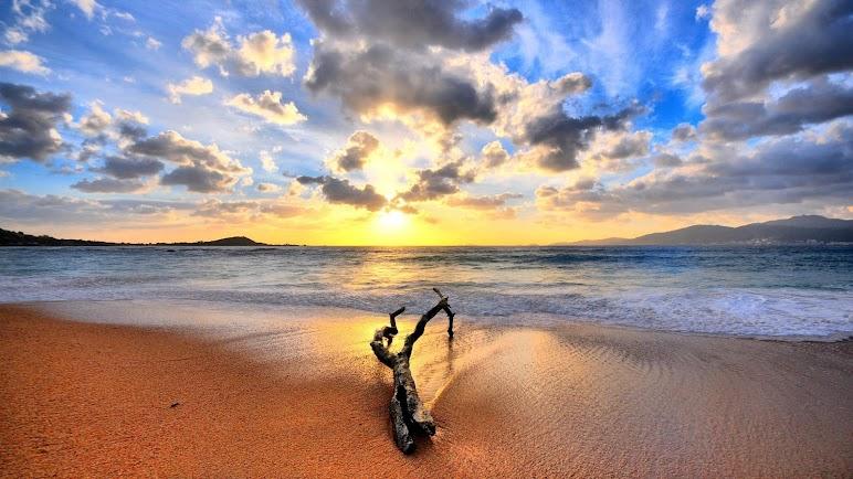 Nature Beach 7