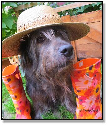 Lotte mit Hut