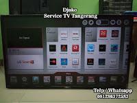 service tv situ gadung pagedangan