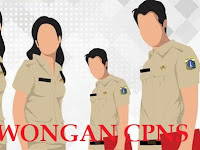Pemerintah Akan Membuka Pendaftaran CPNS