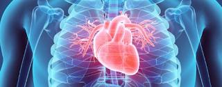 Rekomendasi Dokter Spesialis Penyakit dalam Kardiovaskular di Bogor Terbaik