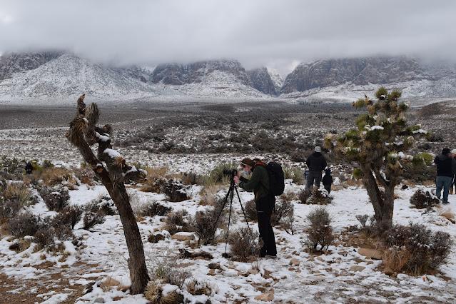 Red Rock Overlook Las Vegas People in Snow