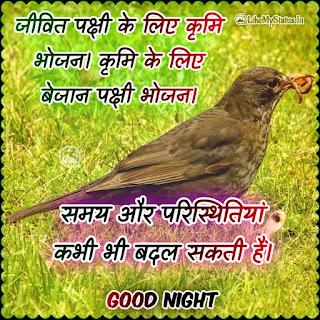 Good night hindi quote
