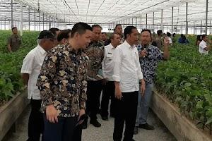 Tinjau Pabrik di Riau, Jokowi Kaget Kayu Bisa Diolah Jadi Kain