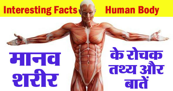 60 Interesting Facts About Human Body in Hindi