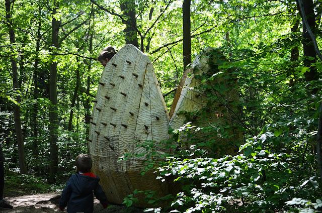 Leśna Pętla Przygód i Tajemnic w Mielnie - edukacja i zabawa w jednym