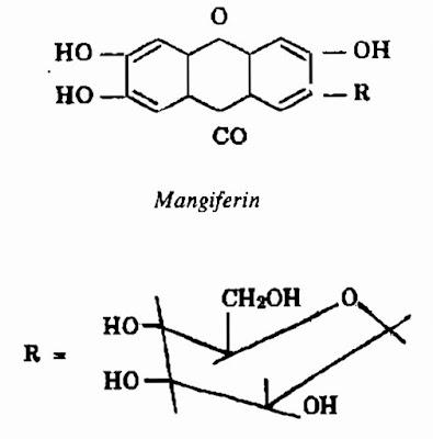 Thành phần hóa học vỏ thân và lá Xoài - Mangifera indica - Nguyên liệu làm thuốc Chữa bệnh Mắt Tai Răng Họng
