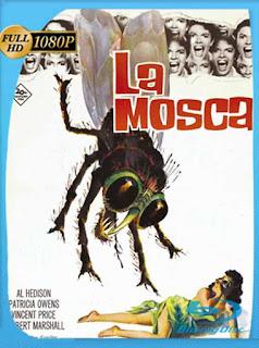La Mosca (1958) HD [1080p] Latino [GoogleDrive] SilvestreHD