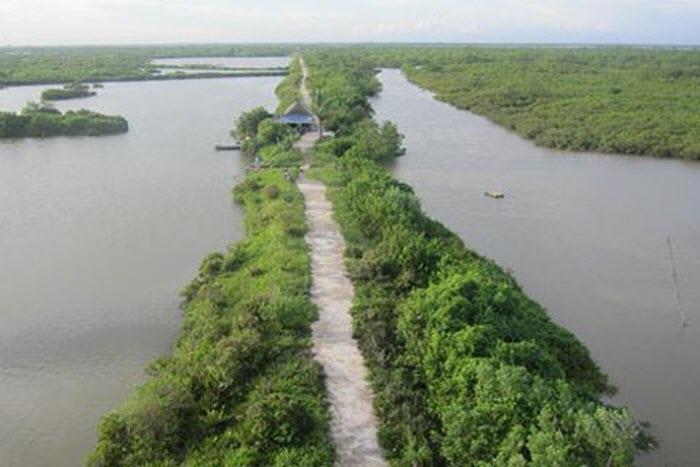 Khám phá vùng lõi khu dự trữ sinh quyển thế giới ở cửa sông Hồng -1