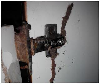 pintu kitchen set diserang rayap