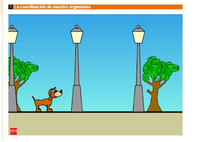 http://www.librosvivos.net/smtc/homeTC.asp?TemaClave=1061