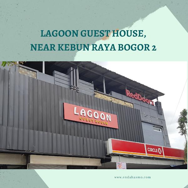 Staycation di Lagoon Guest House, RedDoorz Near Kebun Raya Bogor 2
