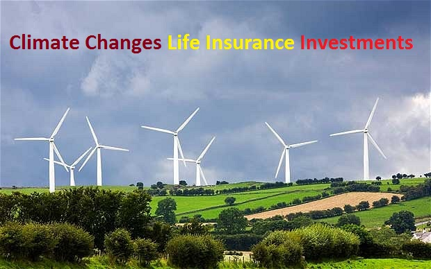 How Climate Change Can Be Countered through Life Insurance Investments