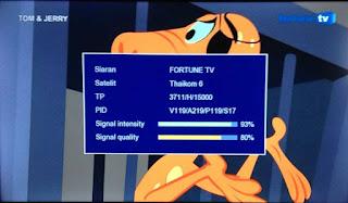 Fortune TV Sinyal Besar