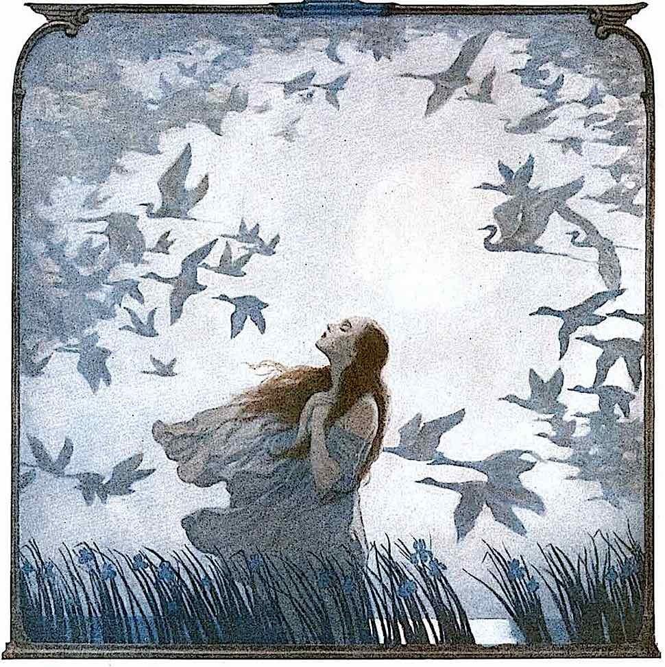 an N.C. Wyeth illustration of a woman in marsh wetlands with birds flying past