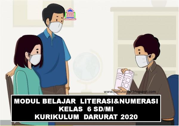 Modul Pembelajaran Jarak Jauh Kelas 6 SD Kurikulum Darurat Tahun 2020