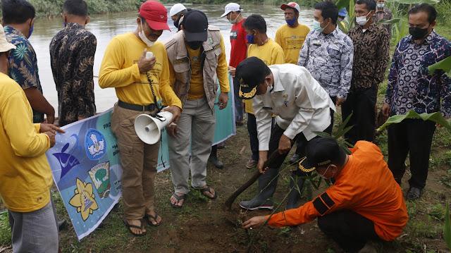Wabup Pasbar Melakukan Gerakan Tanam 1500 Bibit Bambu