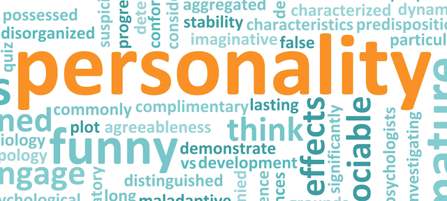 Kenali Potensi Santri Melalui STIFIn Personality