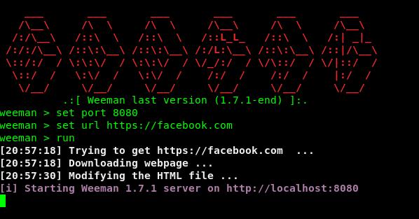 weeman phishing