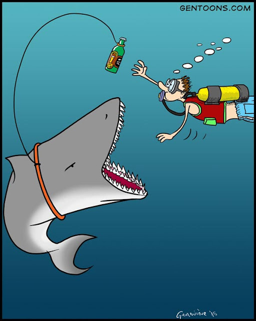 midocean, a diver approaches a shark holding his hand out, swimming eagerly -  the shark is dangling an irresistable lure: a bottle of beer
