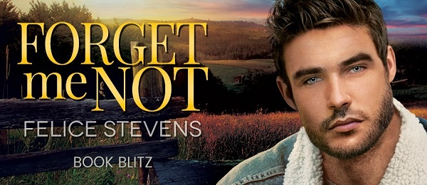 Forget Me Not by Felice Stevens Book Blitz.