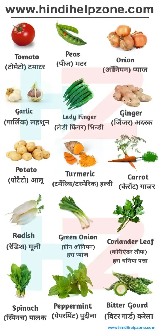 Vegetables Name List In Hindi And English - सब्जियों के नाम