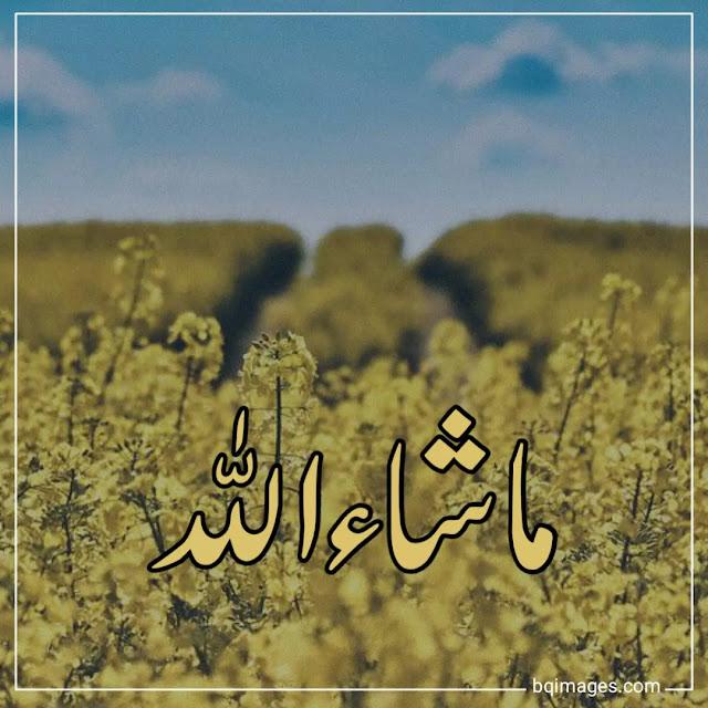 masha allah images download