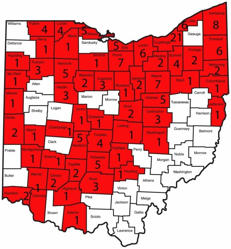 Ohio Birds and Biodiversity: Snowy Owls get major coverage ...