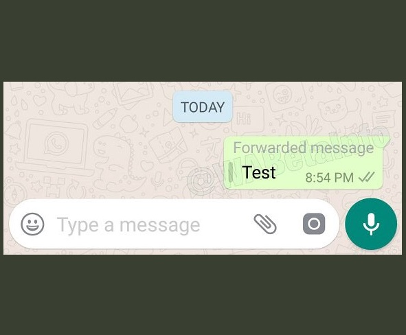 whatsapp-reenvio-mensajes