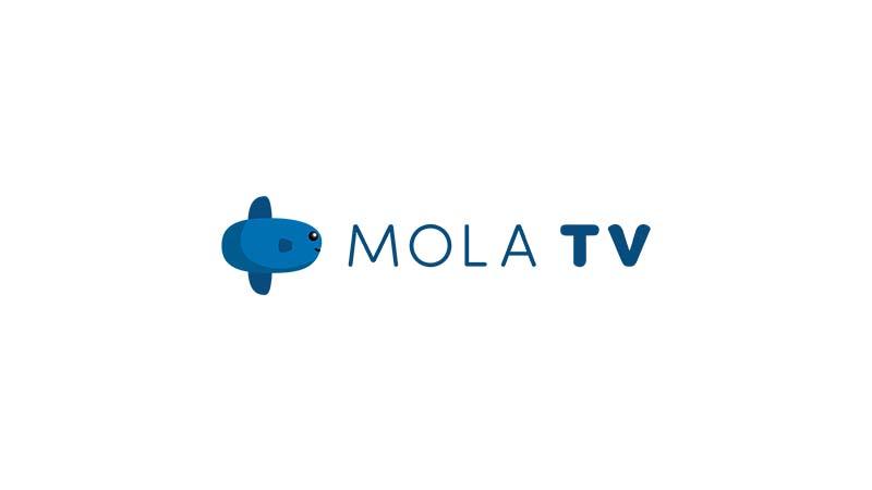 Lowongan Kerja PT Global Media Visual (Mola TV)