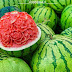 Complete Information About Watermelon
