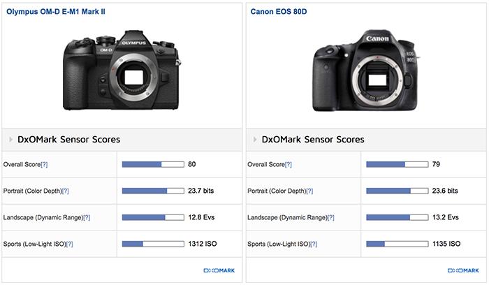 Сравнение сенсоров Olympus E-M1 Mark II и Canon EOS 80D