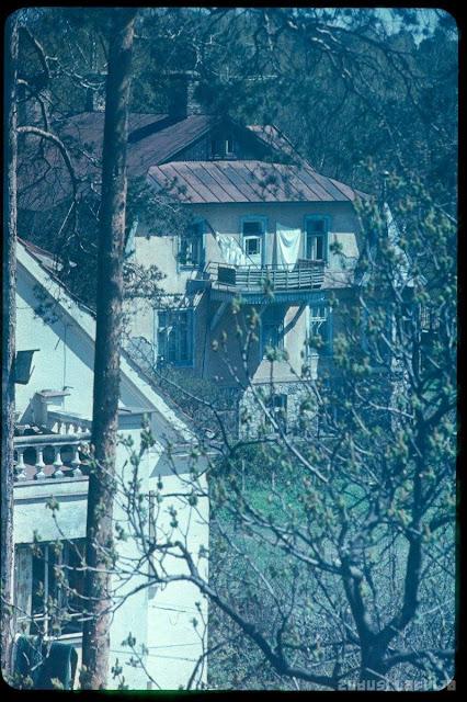 1980 год. Rīga, Mežaparks. Nams Ezermalas ielā 49 no Em. Dārziņa 14 jumta