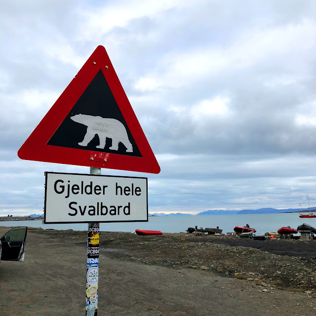Watch out for polar bears